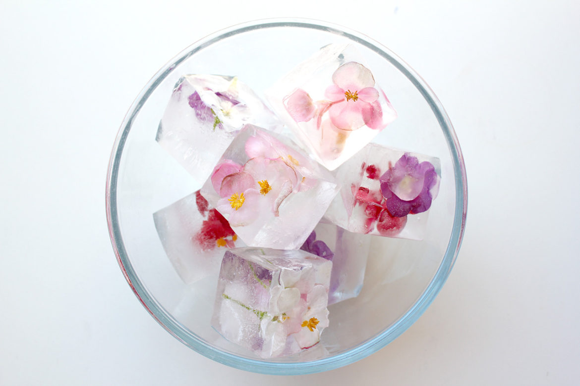 Giant floral Ice Cubes