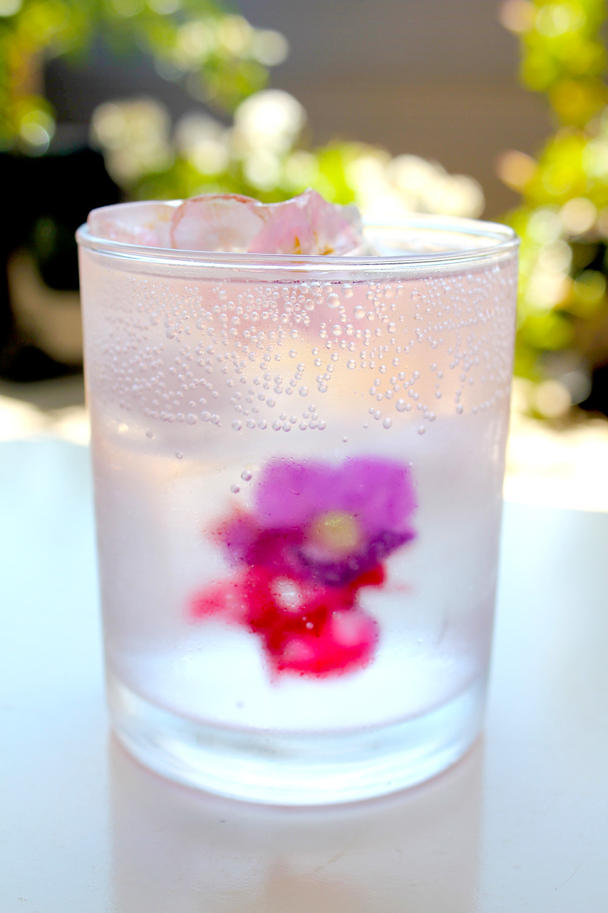 edible floral ice cubes