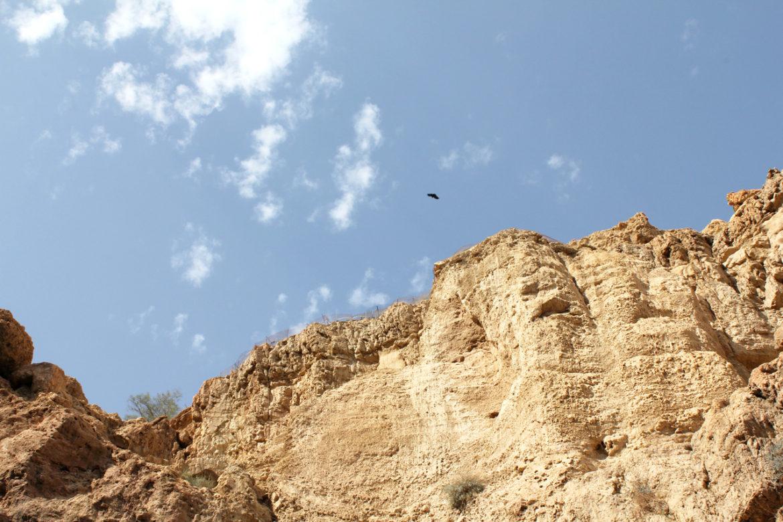 Cliffs at Ein Gedi