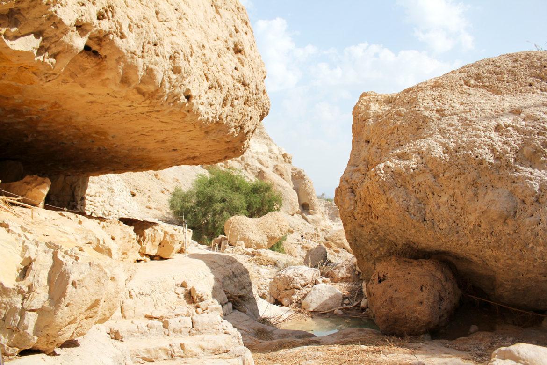 Ein Gedi nature reserve boulders