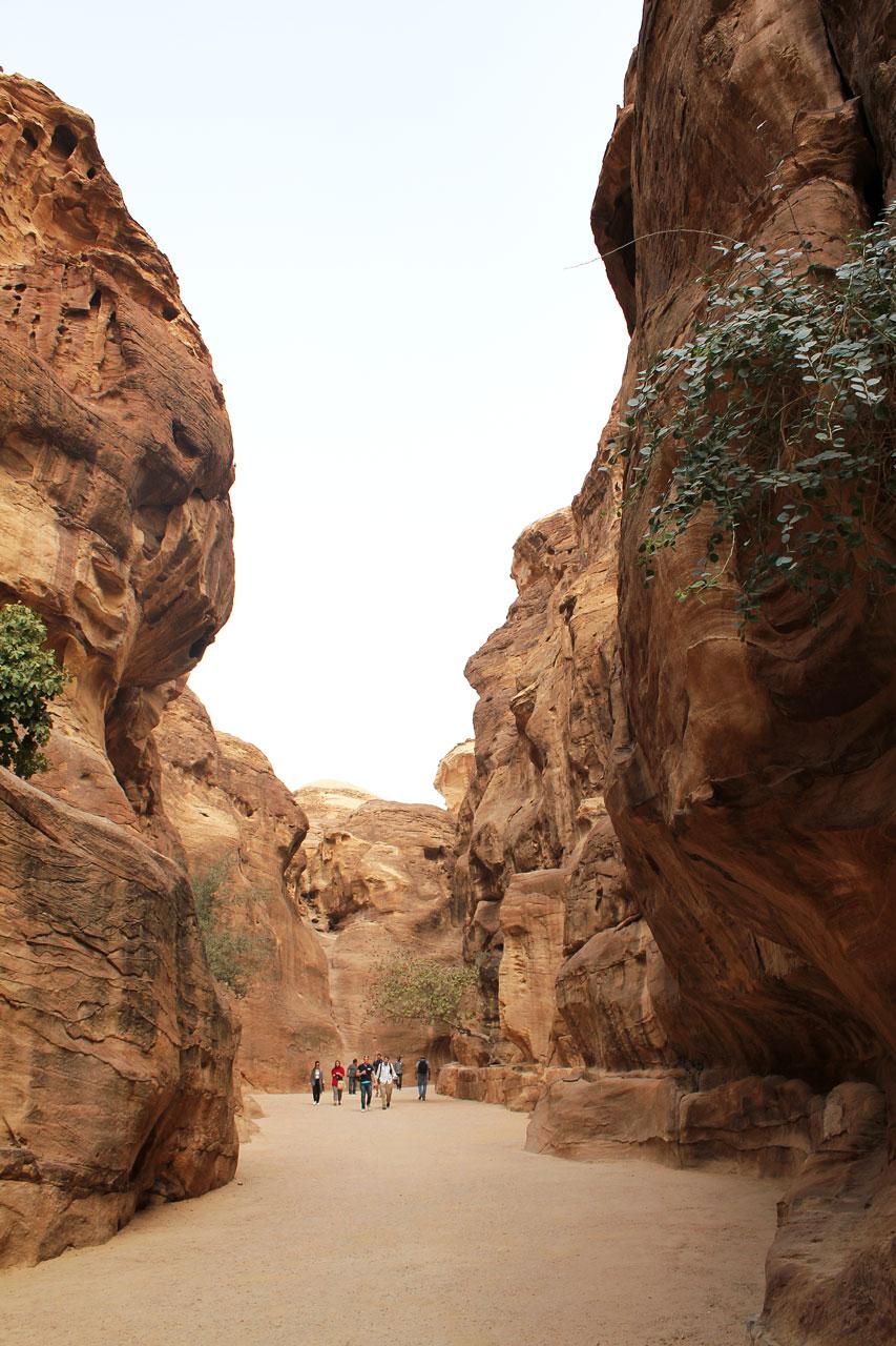The Siq path, Petra