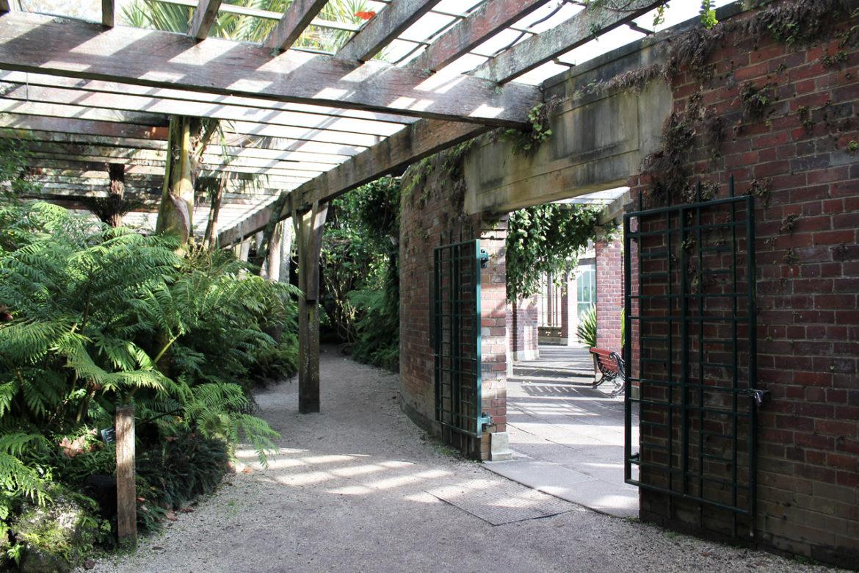 Fernery quarry Auckland