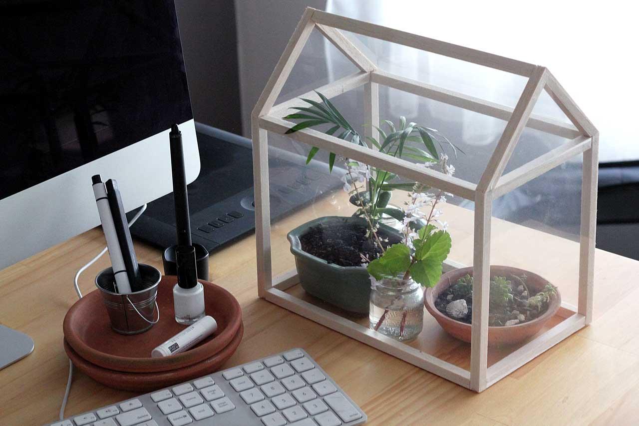 Greenhouse in workspace desk