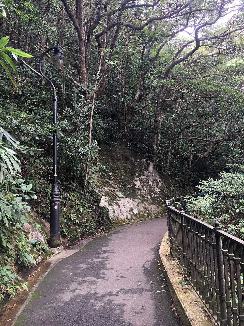 Lugard St Pathway at the top of Victoria Peak