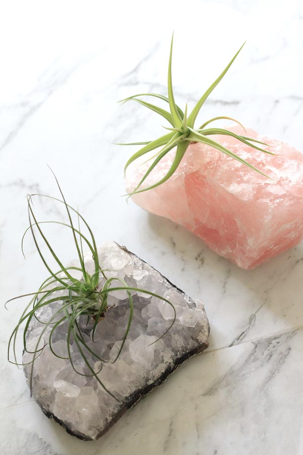 DIY air plant growing on a crystal | Dossier Blog
