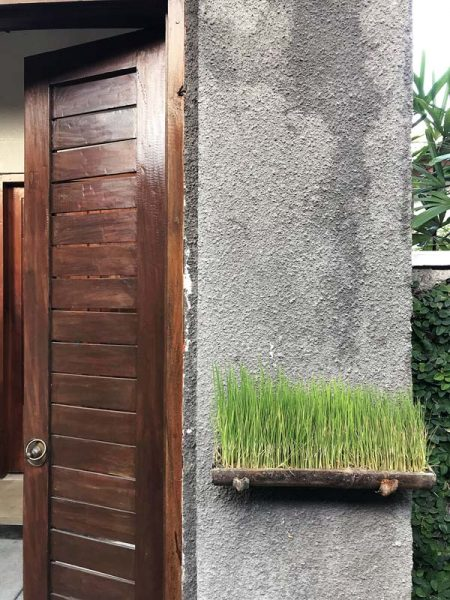 Seven steps to creating a Balinese-inspired tropical garden #7 - adding in elements of whimsy and surprise like this little grass planter next to a doorway | Dossier Blog