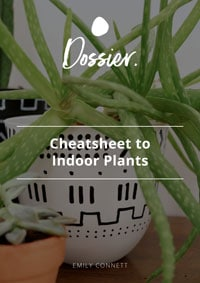 Dossier Blog Cheatsheet to Ggrowing Indoor Plants