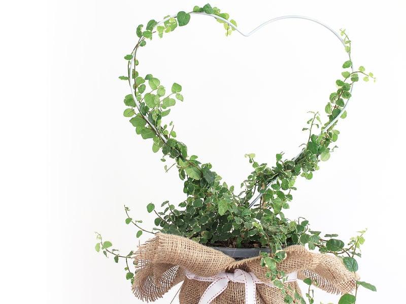 12 DIYs of CHristmas - make a heart planter   Dossier Blog